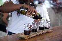 Hawk Haven Vineyard and Winery, Rio Grande, United States