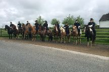 Hickory Hollow Horse Farm