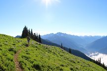 High Divide, Olympic National Park, United States