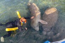 Homosassa Manatee Snorkeling Center, Homosassa, United States