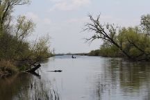 Horicon Marsh, Mayville, United States