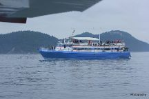 Island Mariner Cruises