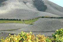 Jaffurs Wine Cellars, Santa Barbara, United States