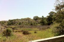 Jekyll Island Trail System, Jekyll Island, United States