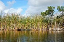 Jenny's Eco Everglades Wilderness Tours, Everglades City, United States