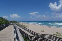 John D. MacArthur Beach State Park, North Palm Beach, United States