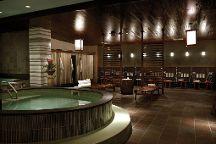 Kabuki Springs and Spa