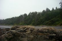 Kalaloch Beach Trail 4, Olympic National Park, United States