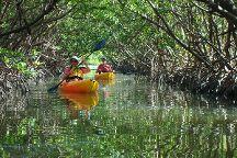 Kayak Excursions - Bunche Beach