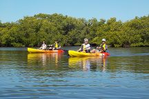 Kayak Excursions - Bunche Beach, Fort Myers, United States