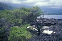Kealakekua Bay, Captain Cook, United States