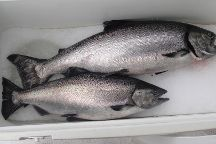 Ketchikan fish On Day Charters