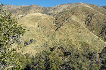Laguna Mountain Recreation Area, Mount Laguna, United States