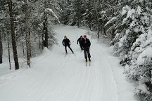Lapland Lake Cross Country Ski Center, Northville, United States