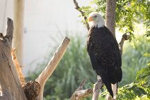 Lee Richardson Zoo, Garden City, United States