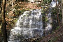 Leonard Harrison State Park, Wellsboro, United States