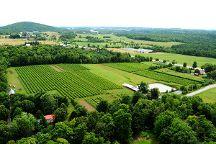 Lincoln Peak Vineyard, Middlebury, United States
