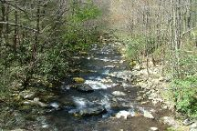 Little River Road, Great Smoky Mountains National Park, United States