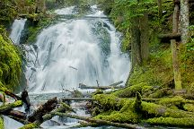 Little Zigzag Falls, Government Camp, United States