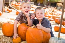 Lucky Ladd Farms, Eagleville, United States