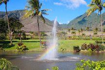 Maui Zipline Company