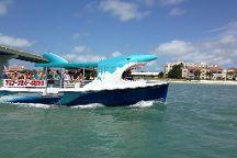 Mega Bite Dolphin Tour Boat