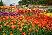 Minnesota Landscape Arboretum, Chanhassen, United States