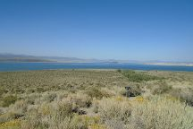 Mono Lake County Park, Lee Vining, United States