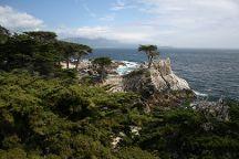 Monterey Peninsula Recreational Trail, Monterey, United States