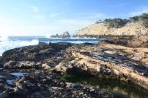 Monterey Peninsula Recreational Trail, Monterey, United States
