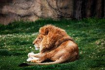 Montgomery Zoo, Montgomery, United States
