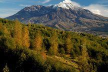 Mount St. Helens, Washington State, United States