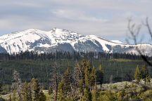 Mount Washburn, Yellowstone National Park, United States