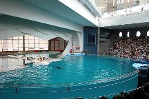 National Aquarium, Baltimore, United States