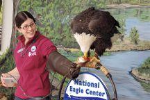 National Eagle Center, Wabasha, United States