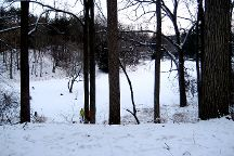 Nichols Arboretum, Ann Arbor, United States