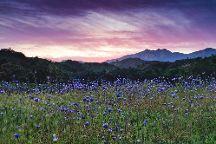 Ojai Valley Land Conservancy, Ojai, United States