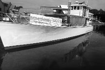 Osprey Boat Charters