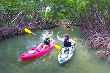 Paddle Marco, Marco Island, United States