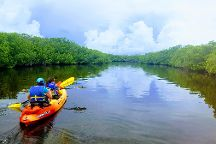 PADDLE! The Florida Keys, Tavernier, United States