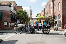 Palmetto Carriage Works, Charleston, United States