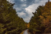 Park Loop Road, Acadia National Park, United States