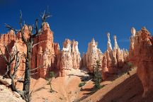 Peek-A-Boo Loop, Bryce Canyon National Park, United States