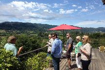 Platypus Wine Tours, Napa, United States
