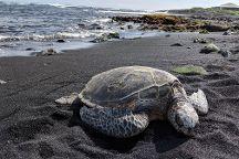 Punalu'U Beach, Pahala, United States