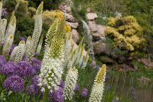 Red Butte Garden, Salt Lake City, United States