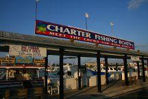 Reel Time Fishing Charter