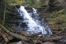 Ricketts Glen State Park, Benton, United States