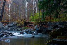 Robert Treman State Park, Ithaca, United States