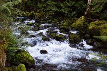 Rocky Brook Falls Trail, Brinnon, United States